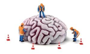 Psicologo a Monterotondo e a Roma